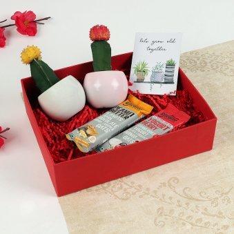 Valentine cacti love box