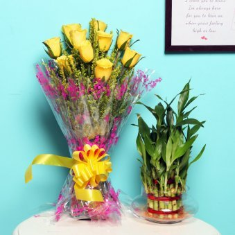 Yellow Lucky Combo - Good Luck Plant Indoors in Potpourri Vase with Bunch of 10 Yellow Roses