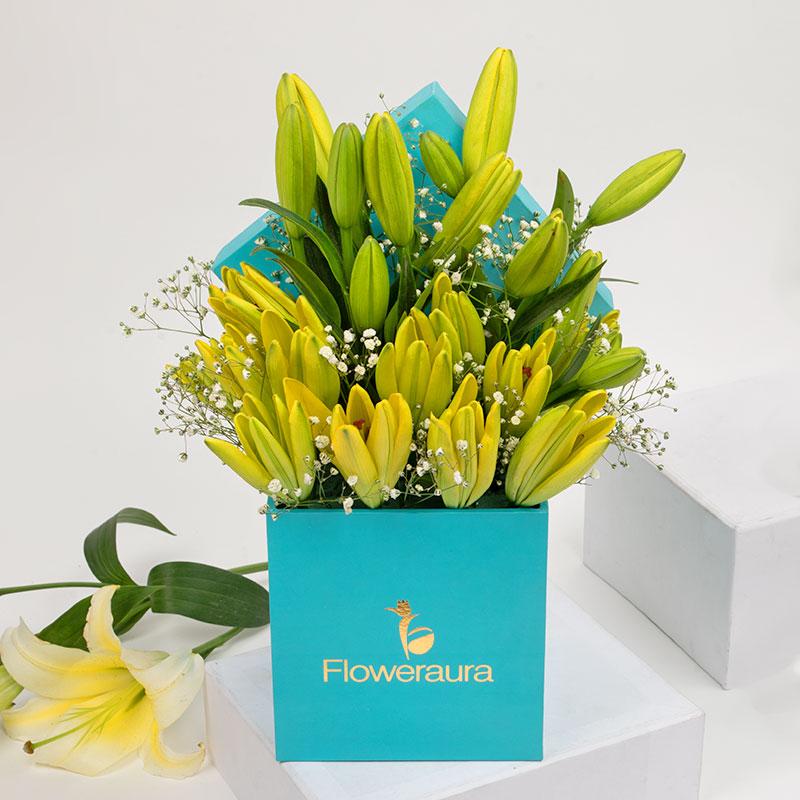 Sunny Lily Box