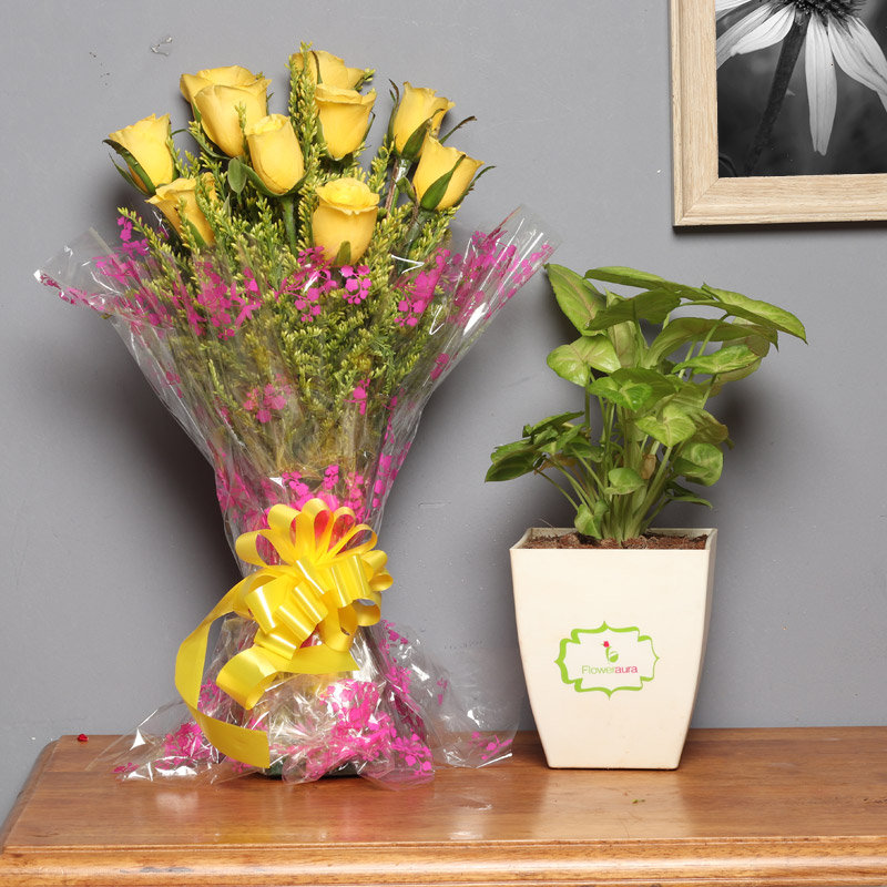 Sunrise Foliage Combo - Foliage Plant Indoors in FlowerAura Chatura Vase with Bunch of 10 Yellow Roses