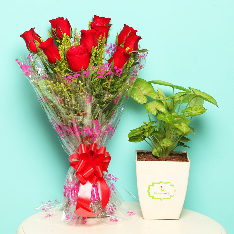 Syngonium N Roses - Foliage Plant Indoors in Floweraura Chatura Vase with Bunch of 10 Red Roses