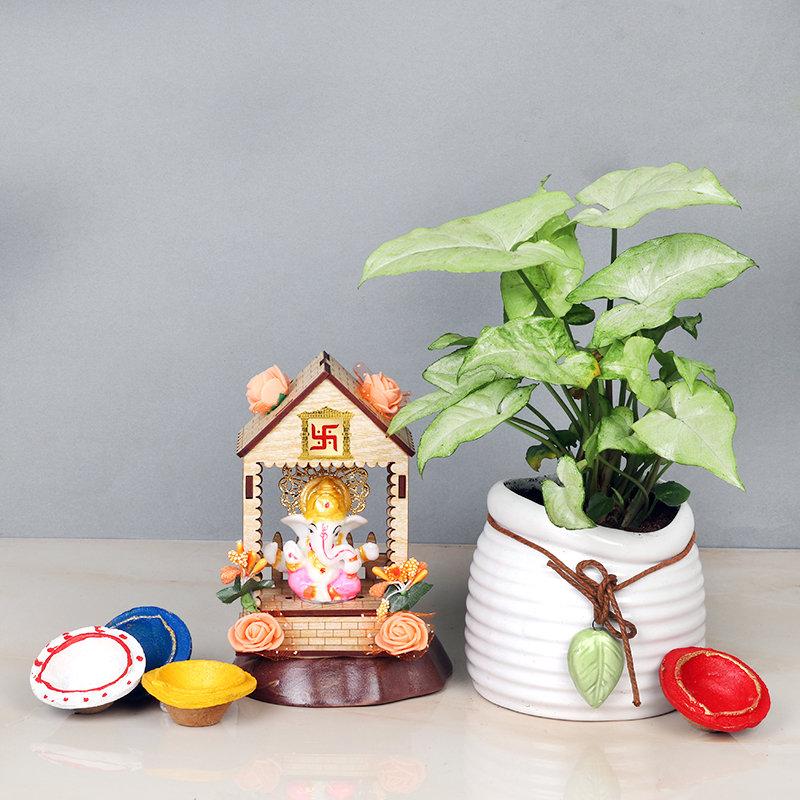 Syngonium Plant With Lit Organic Diyas