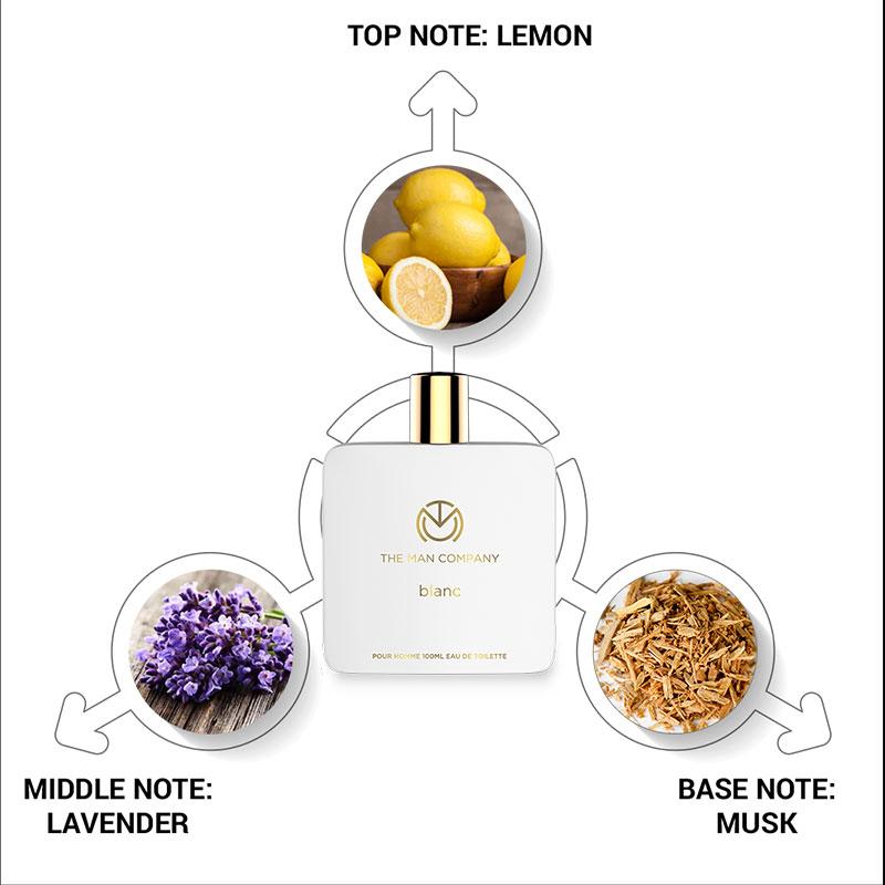 Ingredients Info of The Blanc Eau De Toilette