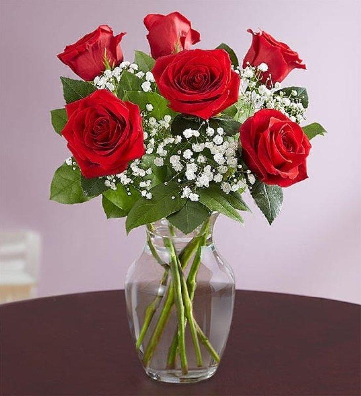 The Rose Love