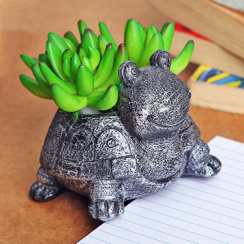 Online Plants - Turtle Vase For Good Luck