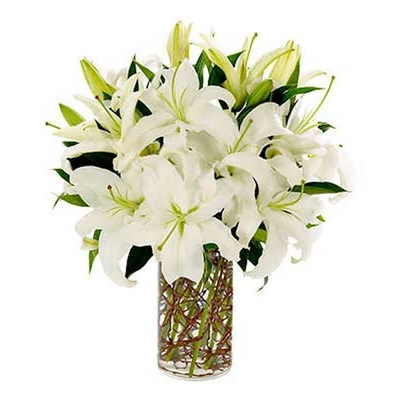 White Lilies In A Vase