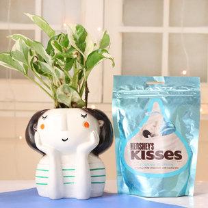 Pothos Plant With Hersheys Kisses Chocolate